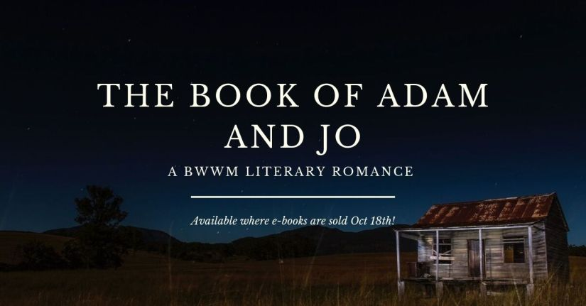 nov the book of adam and jo fb ad