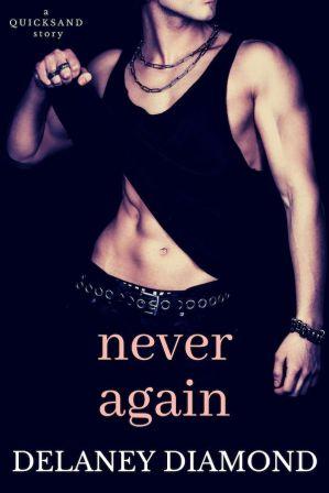 Never Again_600X900